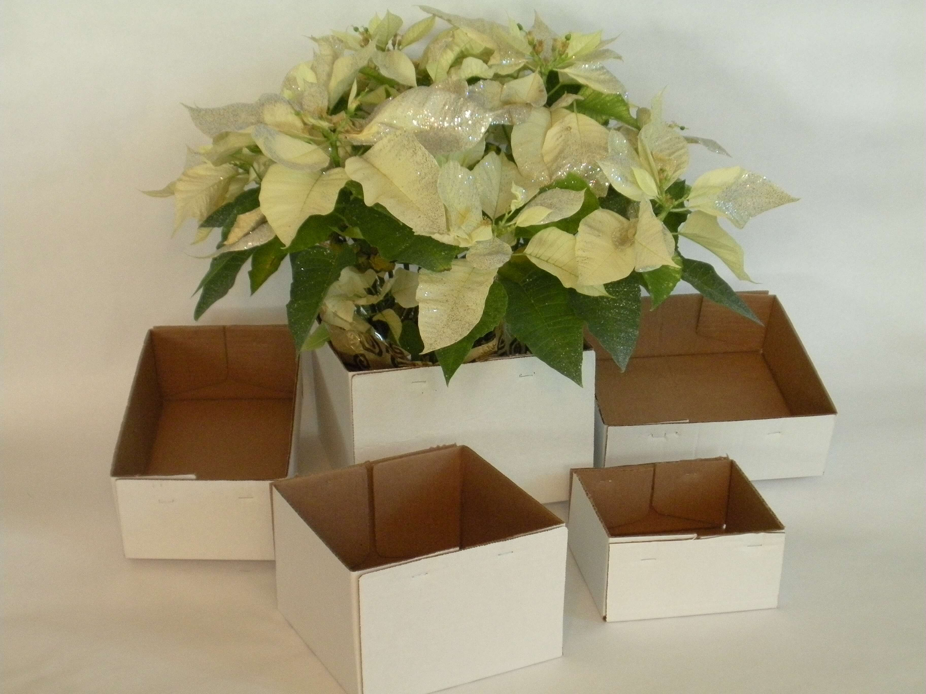 Floral boxes boxes sleeves and more floral boxes staple end box izmirmasajfo